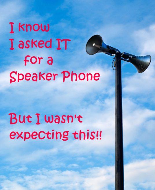 Tannoy Speaker